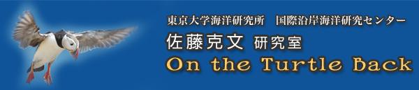 東京大学海洋研究所 国際沿岸海洋研究センター 佐藤克文 研究所 On the Turtle Back
