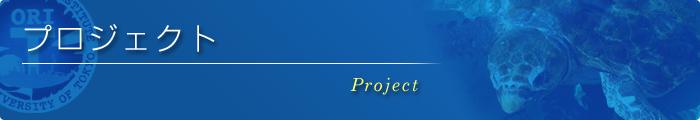 研究プロジェクト